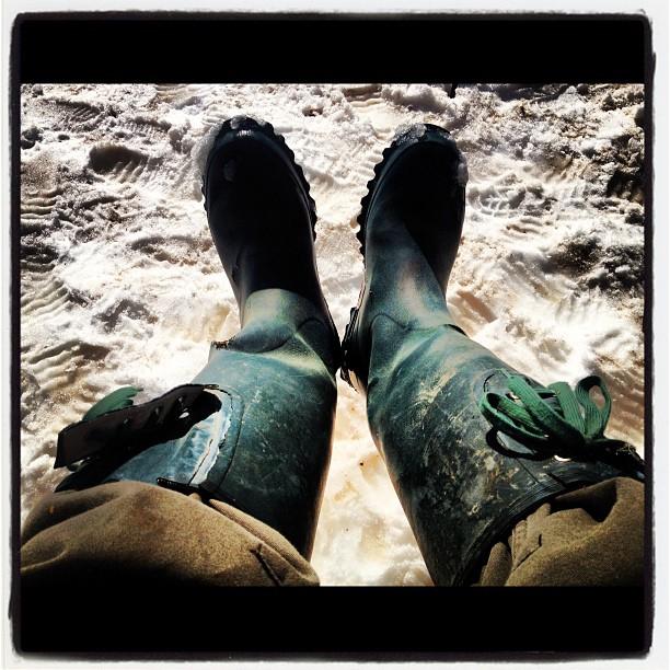 boots20年近く履いていたブーツの限界が来た。じわじわと 染みてきて足が冷たい^^; その昔 厩舎でバイトしている時に買った思いで深いブーツだつた。新しいモノを物色するか(^^)