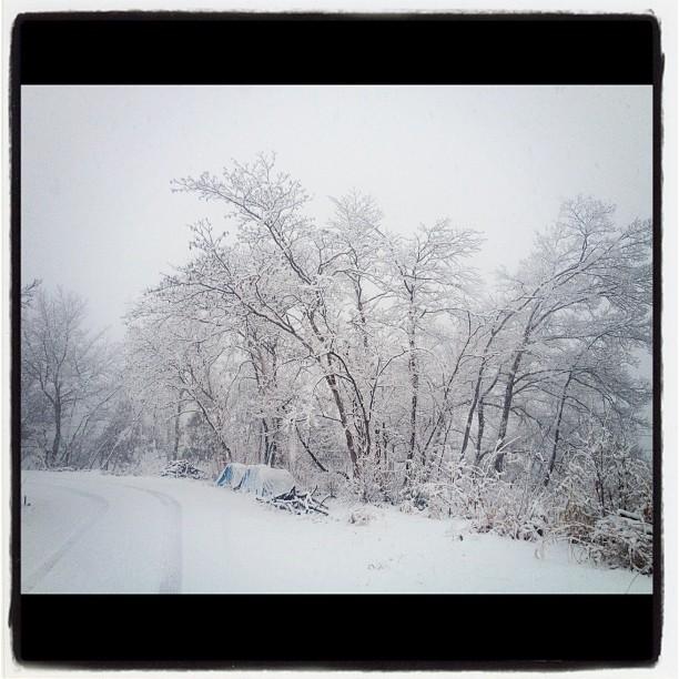 nagasaka*base It's snowing.It's peaceful when it's snowing.完全に雪に覆われました!…閉ざされた…とも^^;