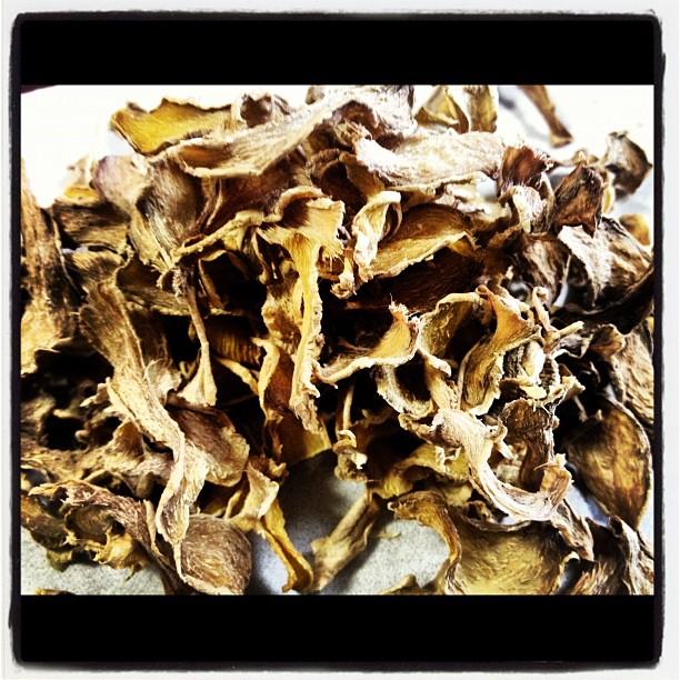 Zingiberis Rhizoma生姜を スチームしてから乾燥させました。まるで漢方薬のようなしあがり(^^) からい が 暖まる感じです。