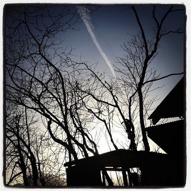 暖かな日差し。もうすぐ日が沈みます(^^)