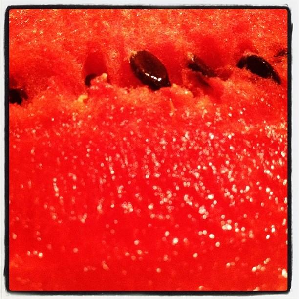 fully ripe 畑で育てたスイカは完熟^^ 赤い色が最高に 真っ赤だ!