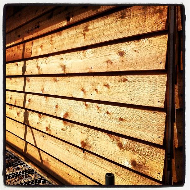 ladder 集中的に外壁貼り(^^) 真夏ほどの陽射しはないけれど 汗が噴き出る(^^;;