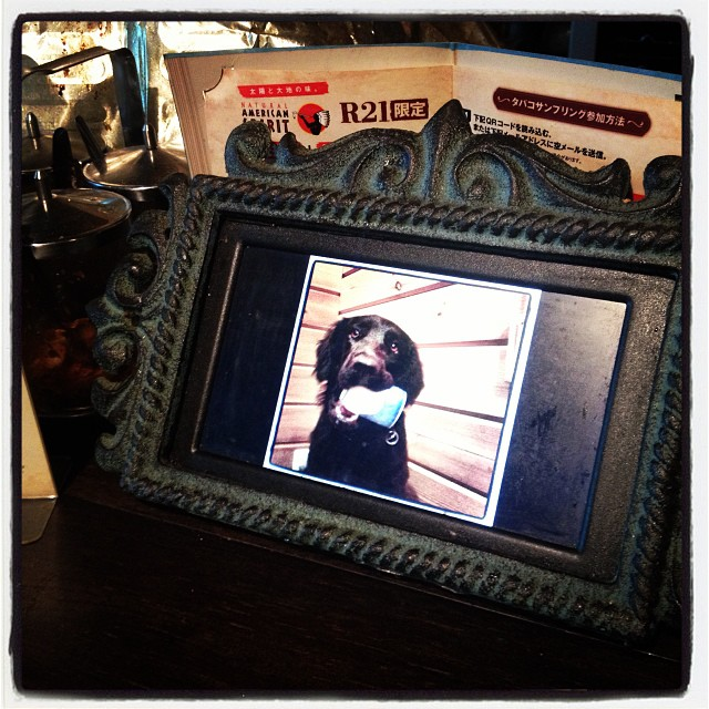 frame カウンターに置いてある デジタルフォトフレームの写真を 一部リニューアルした。東欧旅写真だったものを nagasaka*baseの写真に(^^)