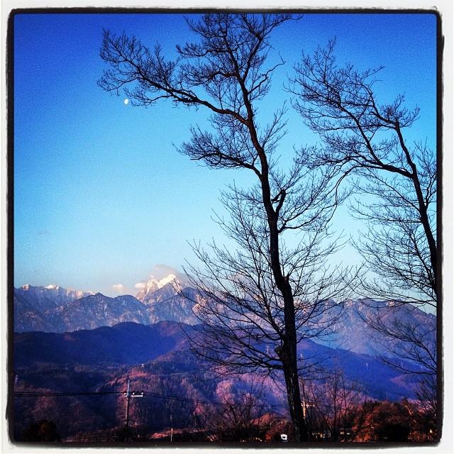 cold season寒い朝です^^;