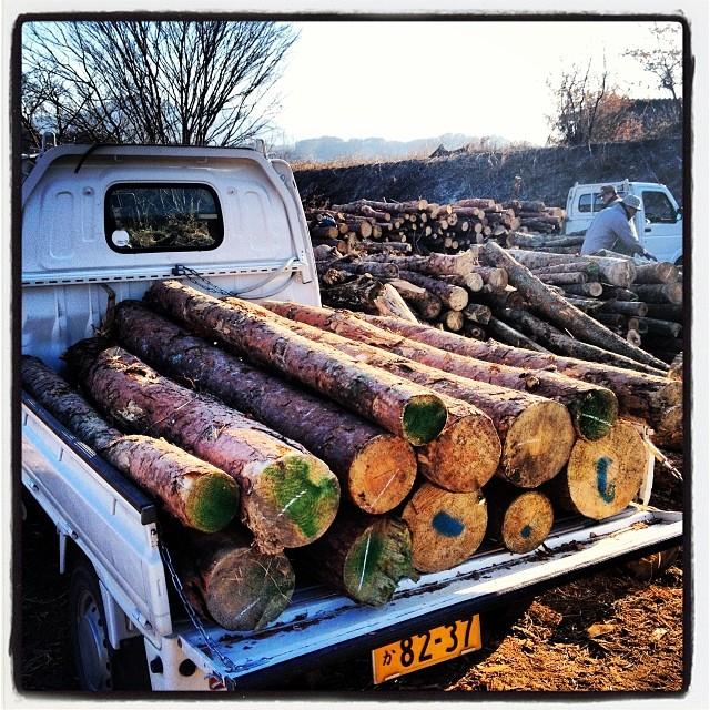 thinned wood河原で無料配布していた薪用の木材を貰いに行きました(^ ^)軽トラの荷台一杯に!