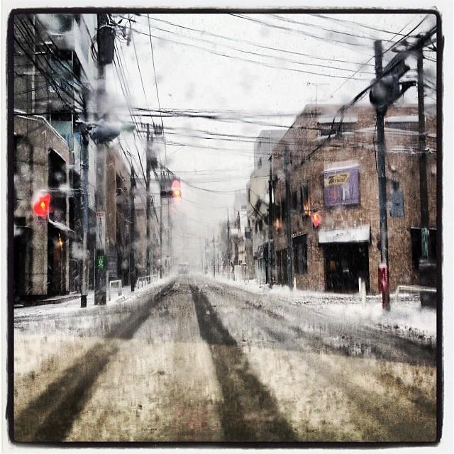 landscape of snow どこもかしこも雪^^;