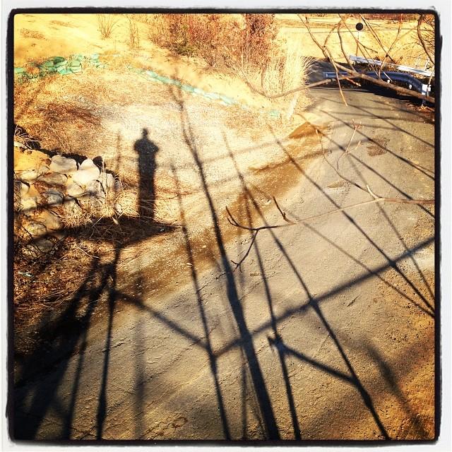 stand on a scaffold 足場があると登りたくなるモノです(^ ^)
