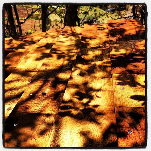 shadow 燻製小屋の屋根に貼られたレッドシダー^^芽吹き出した葉っぱが影となり映り込む(^ ^)