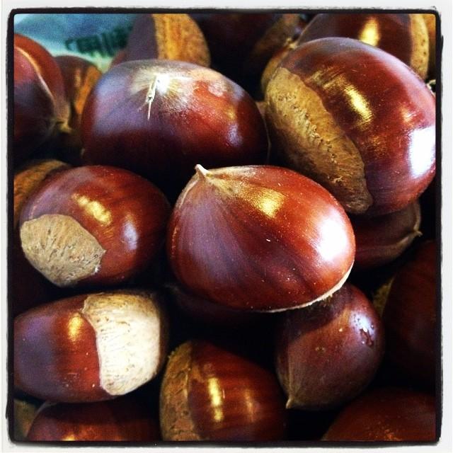 sweet chestnut ご近所さんから相次いで栗を貰った^^しかも立派な栗!茹で栗 蒸し栗 栗ご飯••食欲ひろがる秋の訪れか^^