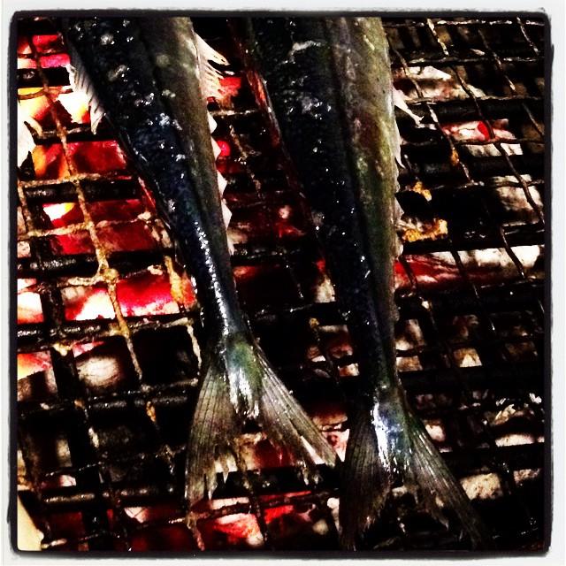 pacific saury 秋刀魚はやっぱり炭火焼き^^