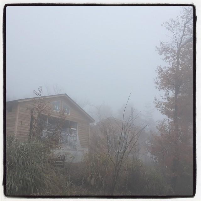 whiteout 雨がやんで 晴れてきたなと思ったら あっという間に霧の中^^;