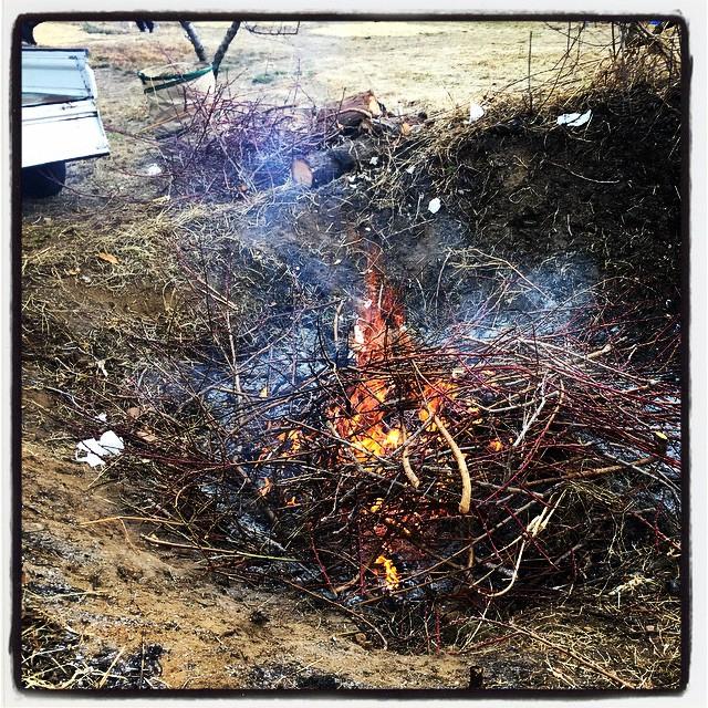 bonfire 桃の木を剪定として出た大量の枝を焚き火^^おおきな焚き火^^ 焚き火→どんどん焼べる→熱い→焚き木拾い→熱い→汗かく→冷える→寒い^^;