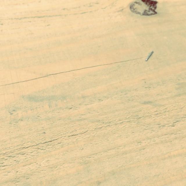 caterpillar 閲覧注意^^;画面の右から左へと 毛虫が進んでいきます^^; #mountainmountain #nagasakabase #そんなあなたはスパイシー