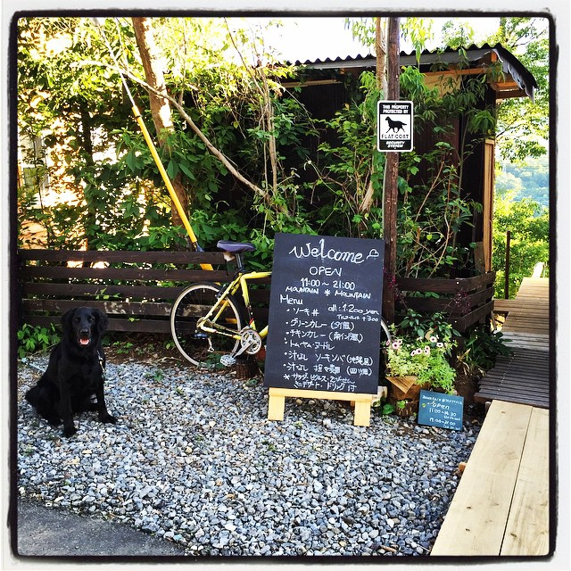 sign 看板と看板犬^^ #nagasakabase #mountainmountain #mtmt #そんなあなたはスパイシー