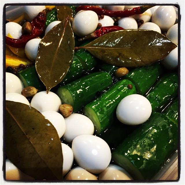 pickle ピクルスの仕込みを^^定番は うずらのたまご^^よーくつかったら さらに美味しくなる^^ 今回は きゅうり、オクラ、イエローパプリカ、ミョウガにカブとその葉っぱ^^最近のお気に入りは ゴボウ^^ どれも美味しく漬かる予定です^^; #mountainmountain #nagasakabase #mtmt #そんなあなたはスパイシー
