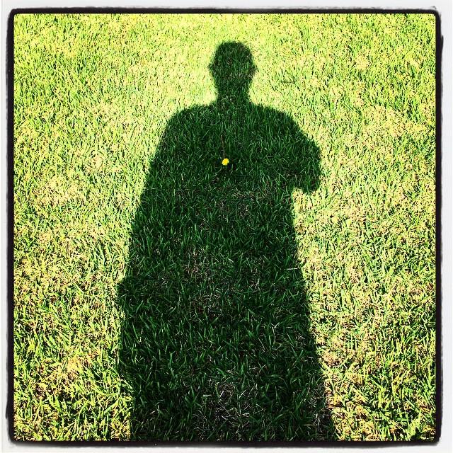 dandelion abbeyの散歩で立寄った ご近所さんの庭の芝生に タンポポが一輪咲いていました^^ #nagasakabase #mountainmountain #そんなあなたはスパイシー