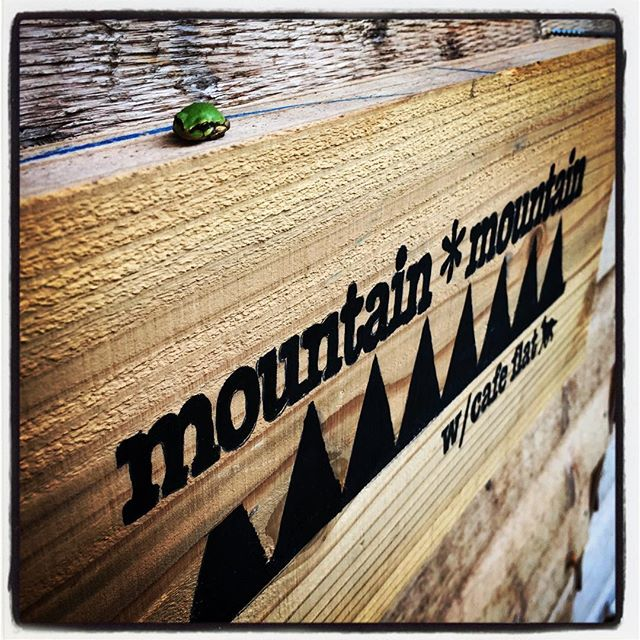 concierge 本日は こんなのがみなさんをお迎えしておりました^^ #nagasakabase #mountainmountain #そんなあなたはスパイシー