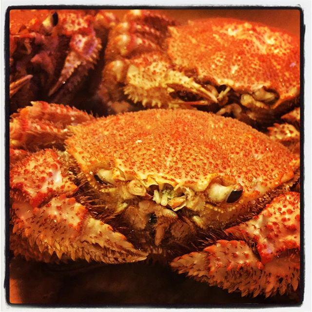 crabe これと格闘すると年末ぽくなります^^ #nagasakabase #mountainmountain #そんなあなたはスパイシー #mountainlife