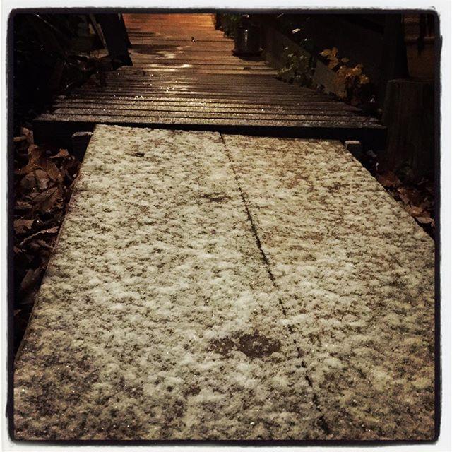 snow step いつのまにか雪だった^^; mountain*mountain 今夜も貸切忘年会^^ いつのまにか外は雪だった^^;どうりで寒いわけだ^^; #nagasakabase #mountainmountain #そんなあなたはスパイシー