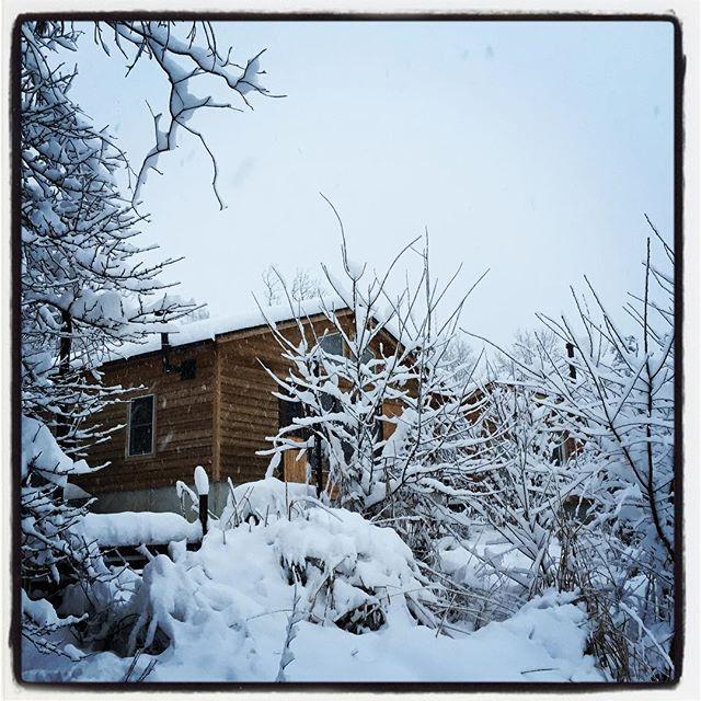 connection for business 本日のランチ営業ですが 除雪と食材の納入・仕込みが遅れてあるのでお休みさせていただきます^^; 本日夜は ご予約のお客様のみの営業となります^^ よろしくお願いします^^ #mountainmountain #nagasakabase #そんなあなたはスパイシー