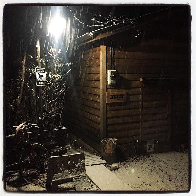snow ふりはじめました 雪^^ つもりはじめました 雪^^; #nagasakabase #mountainmountain #そんなあなたはスパイシー #mountainlife