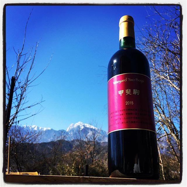 mt kaikoma mountain*mountainのある 長坂町日野で栽培・収穫された葡萄で作られたワインは その名も「甲斐駒」^^ 昨年 収穫のお手伝いに参加させていただき 先日 出来上がったモノをいただきました^^ 山葡萄系の葡萄でつくられたワインで mountain*mountainでも召し上がっていただけるようにと思っています^^ #mountainmountain #nagasakabase #そんなあなたはスパイシー #mountainlife #wine #ワイン
