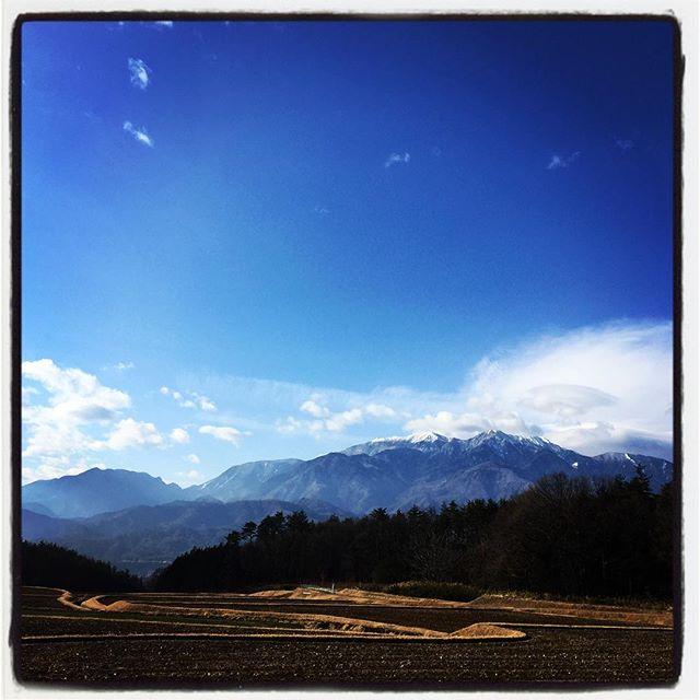sanpo アビーの散歩につきあって里山をぐるりと^^今日もいい天気^^ #nagasakabase #mountainmountain #そんなあなたはスパイシー #mountainlife