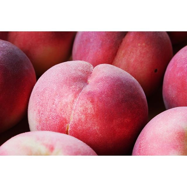 momo 今朝も 朝取り桃が美味しそうです^^ mountain*mountainの店内でも 販売しております^^ 桃の購入のみでのお立寄りも歓迎ですので 朝取れ 樹上完熟の甘い桃をお試しください^^ #mountainmountain #nagasakabase #そんなあなたはスパイシー #mountainlife #peach #farmacy #桃