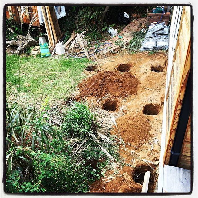 groundwork ふたたび基礎穴を掘り始める^^母屋の西側のデッキ基礎を開始^^定休日を利用して いっきに基礎穴掘り^^そしていっきに 腕と腰がだるくなる^^; #nagasakabase #mountainmountain #そんなあなたはスパイシー #mountainlife #groundwork #selfbilled #セルフビルド #ウッドデッキ