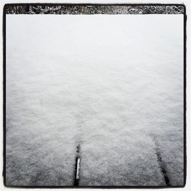 first snow 予報通りに 予報以上の雪が降ってます^^; まだ こころの準備ができてません^^; #nagasakabase #mountainmountain #そんなあなたはスパイシー #mountainlife #firstsnow #snow #雪