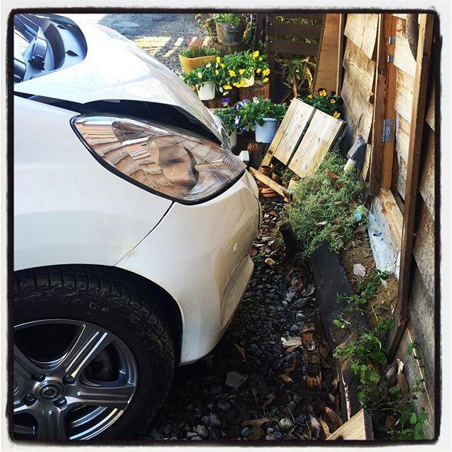 wash outお店の壁に車がヒット^^; ドライバーの方も お客さん、スタッフも怪我もなく幸いでした。店内も グラス類が割れたりした程度で 大した被害は出ませんでした。ただ お店の勝手口のドアと壁面が…これから専門家に見てもらって 復旧にどれくらいかかるのか…自分でとなると やる気が出るまでに数カ月はかかりそうなので^^; とりあえず お店の営業には影響はなさそうなので 通常営業させていただきます!#mountainmountain #nagasakabase #そんなあなたはスパイシー #washout #アクセルの踏み間違えには注意しましょう