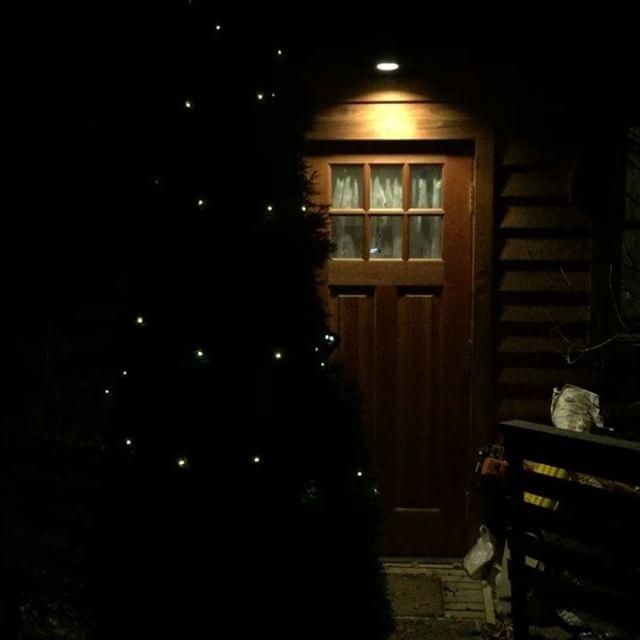 tree 玄関前のコニファーに ちょっとだけ電飾^^少しだけクリスマス気分^^ #nagasakabase #mountainmountain #そんなあなたはスパイシー #Xmas #tree