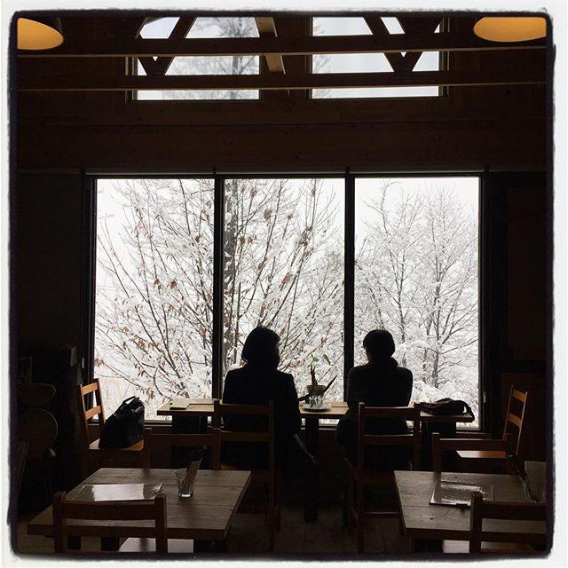 snowscape 予想以上の雪景色^^; ・・にもかかわらず たくさんの方にご来店いただきました^^ありがとうございました^^ 雪の長坂は静かで ただでさえ何もないのですが さらにシンプルで綺麗な眺めになってます^^ まだ降り続いていますが また明日も営業します^^ #mountainmountain #nagasakabase #そんなあなたはスパイシー #snowscape #mountainlife #雪景色