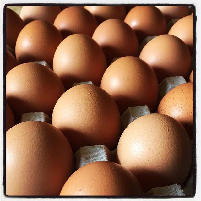egg 白州の奥の方で 平飼いの養鶏をされているROOSTERさんから卵が届いた^^ 中身が美味しいのは勿論 見た目もかっこいい卵です^^ まずはケーキに^^ #mountainmountain #nagasakabase #そんなあなたはスパイシー #mountainlife #rooster #egg