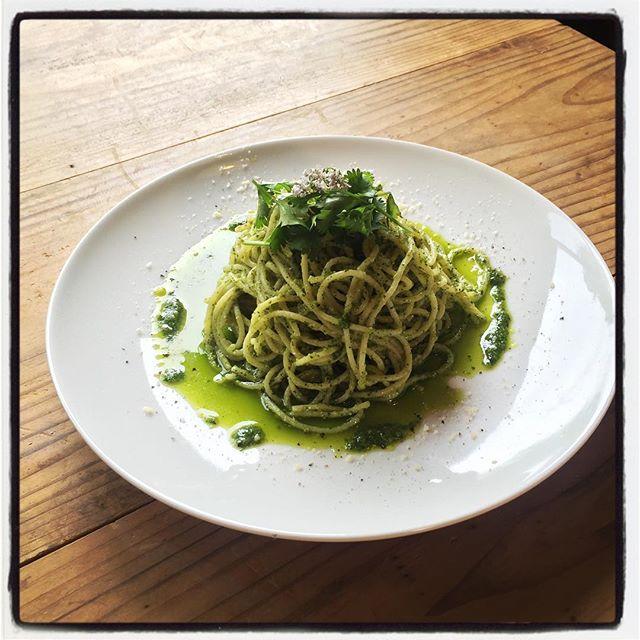 phakchi sauce pasta ジェノベーゼソースの バジルを パクチーに置き換えて^^ 100パーセントパクチーのソースは 松の実や胡桃 パルメジャーノと美味しい融合をしています^^ 久しぶりにつくったな^^ #mountainmountain #nagasakabase #そんなあなたはスパイシ#mountainlife #phakchi #coriander #cilantro #パクチー #世界初のパクチー料理人