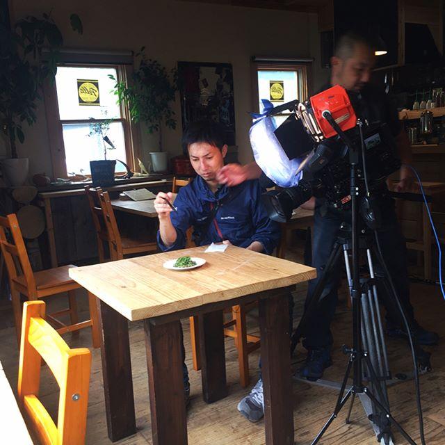 phakchi 今日はお休みですが テレビの撮影が入っております^^ テーマは お家で簡単に出来るパクチー料理^^ 胡麻和えや 葉っぱと根っこの天ぷら、パクチーのソースを使ったパスタの三品を作り方から撮影していただきました^^ 多分近いうちに 放送されて その晩はパクチー料理を作る家庭が増えるでしょう^^; #mountainmountain #nagasakabase #そんなあなたはスパイシー #phakchi #coriander #cilantro #パクチー