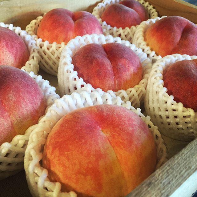 peach*peach 今年も 新府で栽培している桃の店頭販売を始めました^^ 姉夫婦が 新府で桃の栽培を始めて3年目^^今年も収穫の季節がやってきました^^まだ 出荷量は少なめですが 徐々に最盛期に向かって増えていきます^^ 第一弾は 日川白鳳という品種からスタートです^^ 桃の等級にもよりますが ¥1500+送料ぐらいから発送もできます^^ mountain*mountainで 取り扱っているのは 良品と呼ばれる 大きさにバラツキがあったり小さなキズがあったりするものです^^ 贈答用のものに関しては 別途お問い合わせください!#mountainmountain #nagasakabase #そんなあなたはスパイシー #mountainlife #新府は桃源郷 #桃 #日川白鳳