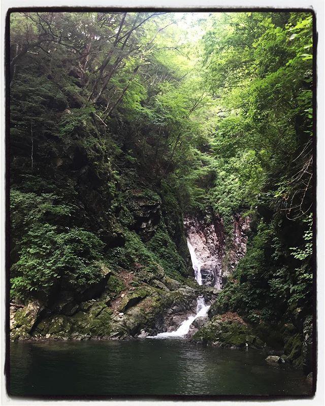 ojiragawa canyon ランチ営業後に尾白川渓谷へ^^ 10分位でこんなとこに来れてしまうのがいいね^^ #ojiragawa #mountainmountain #nagasakabase #そんなあなたはスパイシー #mountainlife #尾白川渓谷
