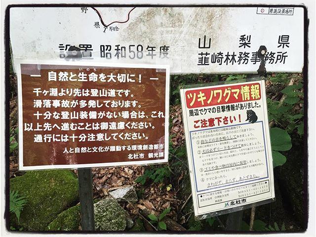 ojiragawa canyon いろんな意味で涼しい場所です^^; #ojiragawa #mountainmountain #nagasakabase #そんなあなたはスパイシー #mountainlife #尾白川渓谷 #できれば熊には会いたくない