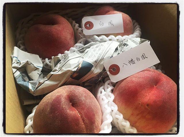 tag 今日も桃達が旅立って行きました^^ 2種類の桃を混載したので 荷札でtag付けしてみました^^ #mountainmountain #nagasakabase #そんなあなたはスパイシー #mountainlife #peachpeach #peach #桃