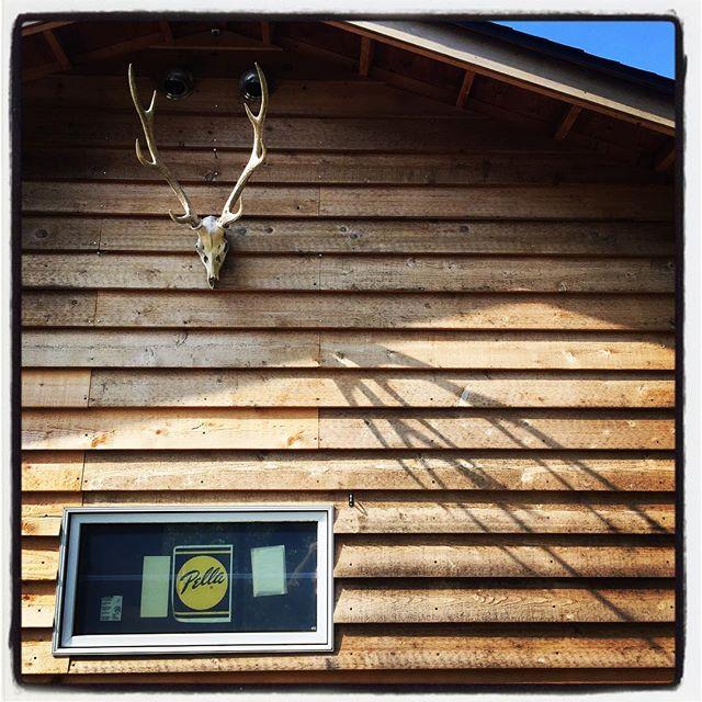 temporary closing 臨時休業のお知らせ^^ 本日 8/26(土)は 終日お休みとさせていただきます。毎年参加させていただいてます ご近所さんの ワイン用の葡萄の収穫と ケータリングのためお休みさせていただきます^^ 収穫した葡萄は やがてmountain*mountainでお飲み頂ける予定です^^ ご迷惑をおかけしますが よろしくお願いします^^ #mountainmountain #nagasakabase #そんなあなたはスパイシー #mountainlife #wine