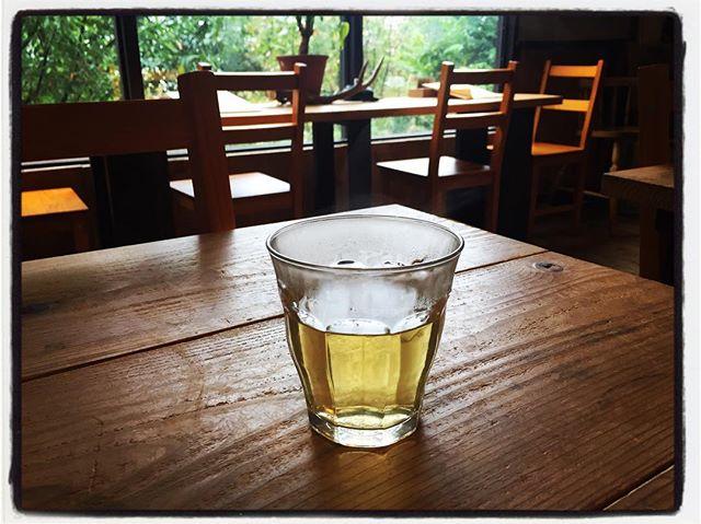 tabicha 本日のwelcome tabichaは 茉莉花茶︎ 普段は 美味しいお水をお出ししてますが 寒い日にはお茶をお出ししています︎ #mountainmountain #nagasakabase #mountainlife #そんなあなたはスパイシー #tabicha #jasmine #tea #お茶を飲みながら旅気分