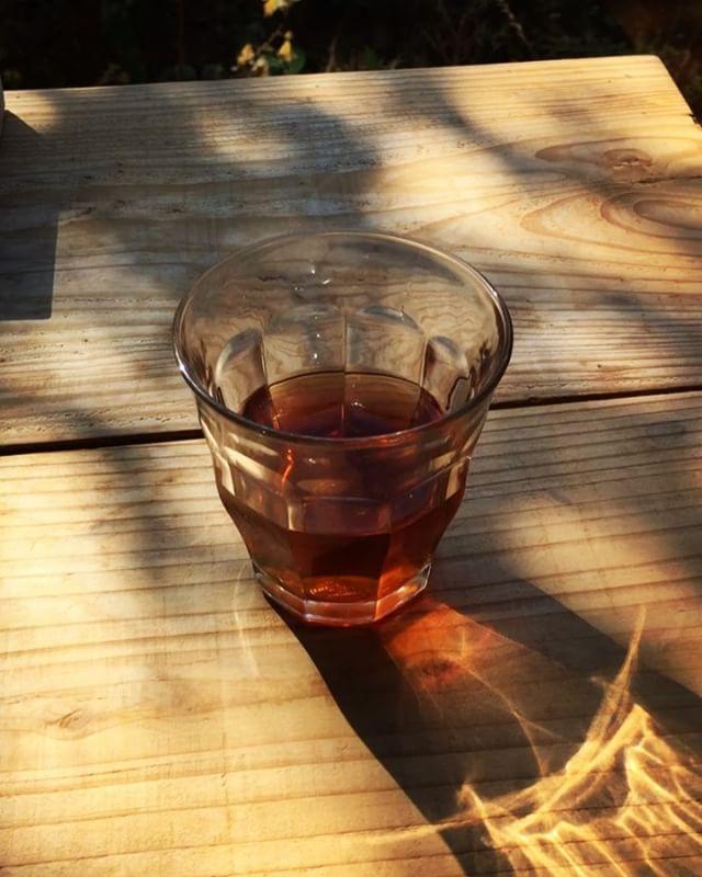tabicha 本日のwelcome tabichaは 一周回ってプーアル茶︎ 中国・雲南の高地で栽培され 長期保存で 後醗酵させたお茶︎ 脂の吸収を抑え身体によいとされてます︎ #お茶を飲みながら旅気分 #そんなあなたはスパイシー #tabicha #mountainmountain #mountainlife #そんなあなたはスパイシー #nagasakabase
