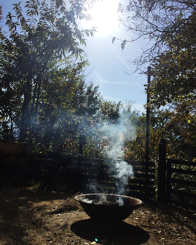 sunny day あたたかいひざしでポカポカ︎ ファイヤーベースで焚き火しながら ご飯に焼芋︎ 片付く気がしないので 今日もまた現実逃避中^^; #そんなあなたはスパイシー #mountainmountain #mountainlife #nagasakabase #現実逃避