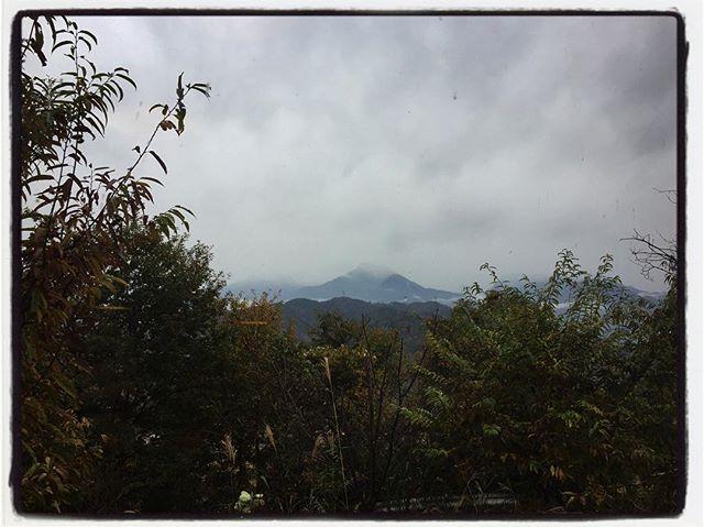 view 本日 11/18のwelcome tabichaはプーアル茶︎ 窓からの景色。ちょうど甲斐駒が見えるあたりの山桜が大きくなり過ぎたので剪定しました︎ 久しぶりに木登りして 鋸でぎこぎこと︎ いい高さまで刈り込めましたが 今日は残念ながら山頂は雲の中^^; そして予定通りの筋肉痛^^; #mountainmountain #nagasakabase #そんなあなたはスパイシー #mountainlife