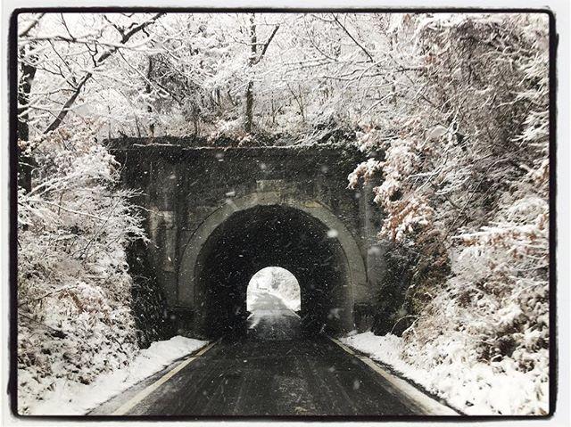 snow day 昼過ぎに降り始めて いまは小康状態︎ あした朝起きたときにどうなっていることやら^^; #snow#mountain #mountainmountain #nagasaka #nagasakabase #yatsugatakebase #yatsugatake #そんなあなたはスパイシー #山梨 #北杜 #移住 #定住 #旅人 #vagabond #料理人 #chef #photographer #cameraman #カメラマン #写真家 #japan #food #料理 #foodpic #foodstagram #foodie #restaurant #kitchen #stories