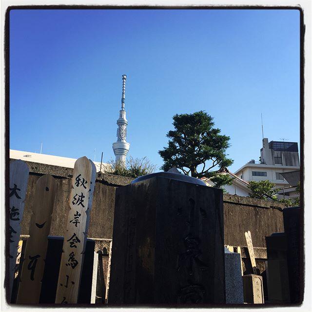 sky tree 昨日は久しぶりの東京へ︎だいぶ行っていなかったので 父親・家族・親戚の墓参りをぐるり︎ついでにちょこちょこ観光と買物と︎ お墓からすぐに見えるスカイツリーと青空が綺麗だったので登ってきました︎ 人と車と店の多さはさすが東京!渋谷の機動隊の多さは異常…背の高い車は駐車場に困ることがよくわかった^^; #mountain #mountainmountain #nagasaka #nagasakabase #yatsugatakebase #yatsugatake #そんなあなたはスパイシー #山梨 #北杜 #移住 #定住 #旅人 #vagabond #料理人 #chef #photographer #cameraman #カメラマン #写真家 #japan #food #料理 #foodpic #タワー好き